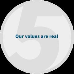 reasons-values.png